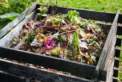 Compost pour tous