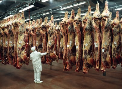 Où est la viande française ?