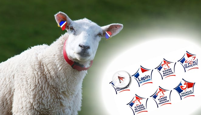 « Viande de France »: le logo tricolore va-t-il rassurer ?
