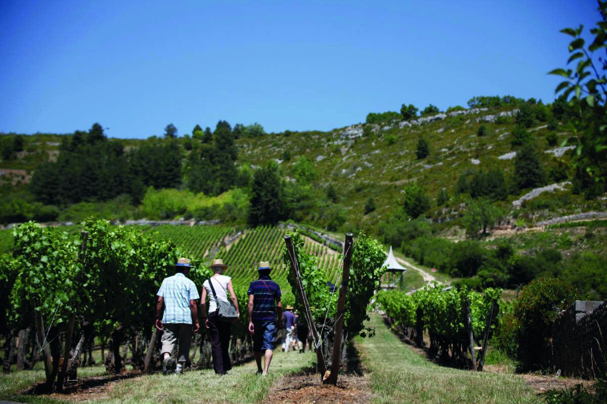 Avril et mai: tout sur les fêtes du vin en Bourgogne