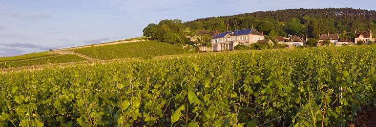 Orages: volnay, l'appellation maudite?