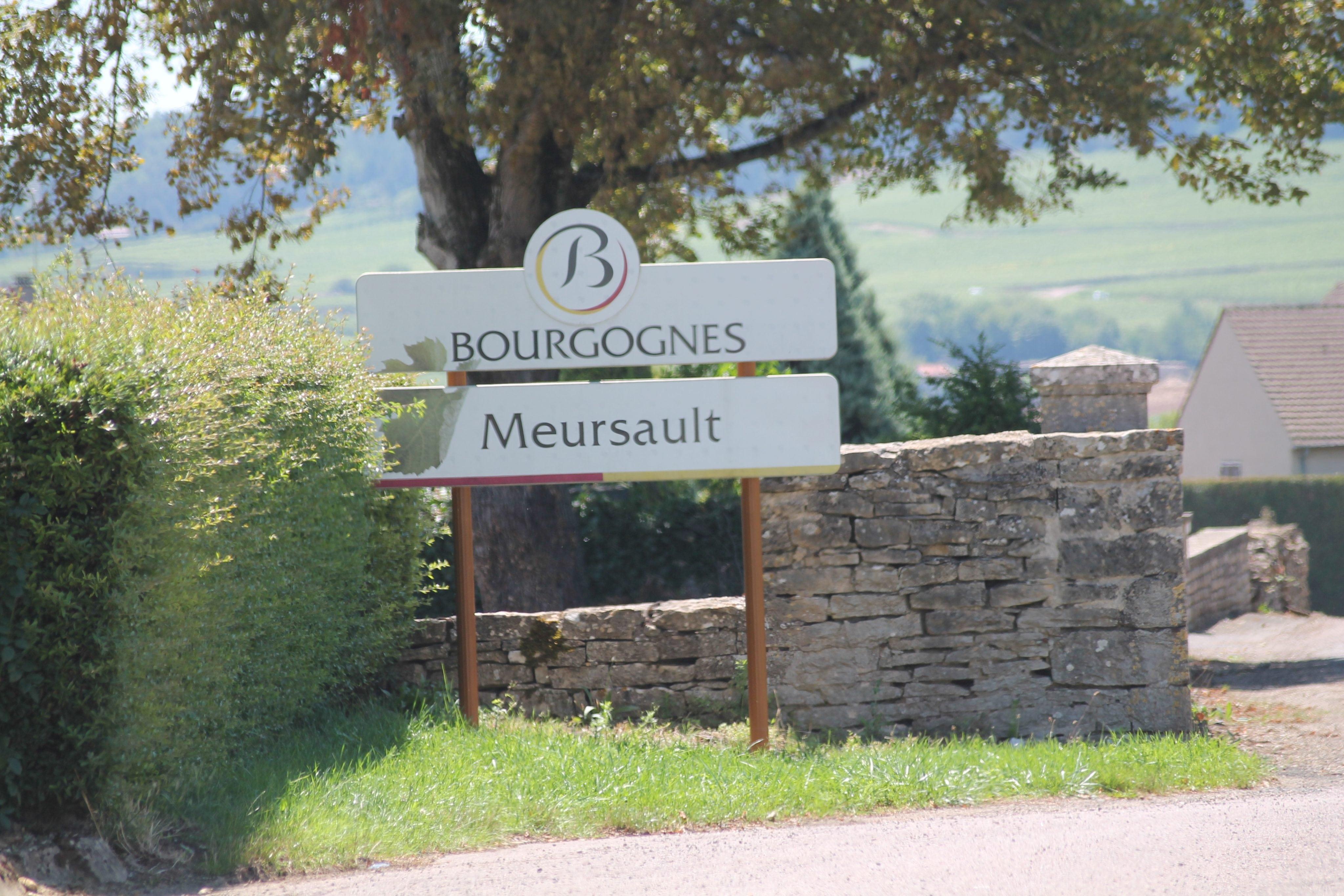 VRP: Meursault, pays de la vadrouille et de l'or blanc