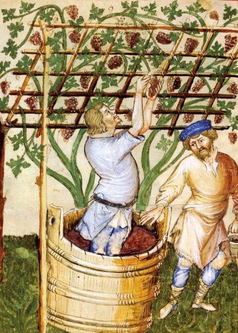 Au Moyen-Âge, le vin meilleur que l'eau