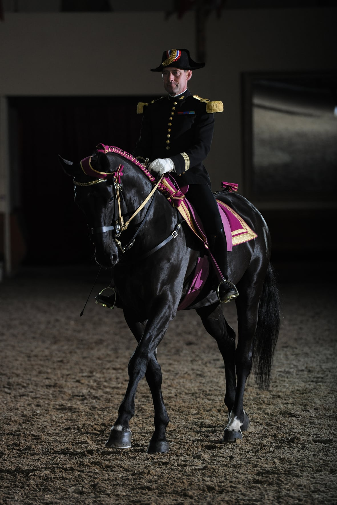 Unesco, Dijon s'inspire du prestigieux Cadre Noir