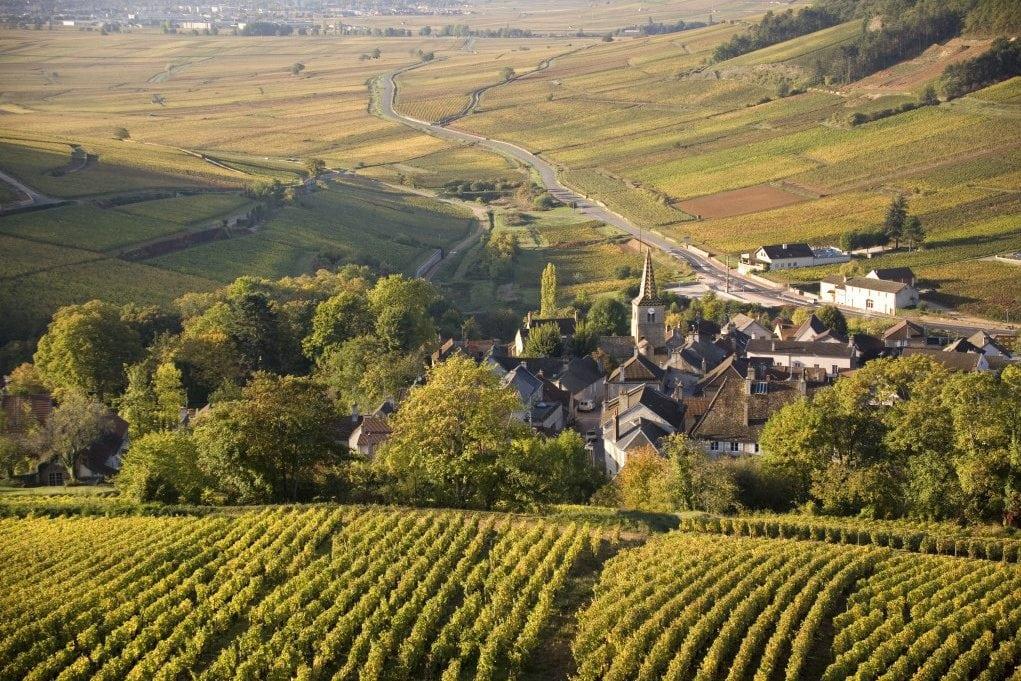 Climats de Bourgogne à l'Unesco, encore un petit effort