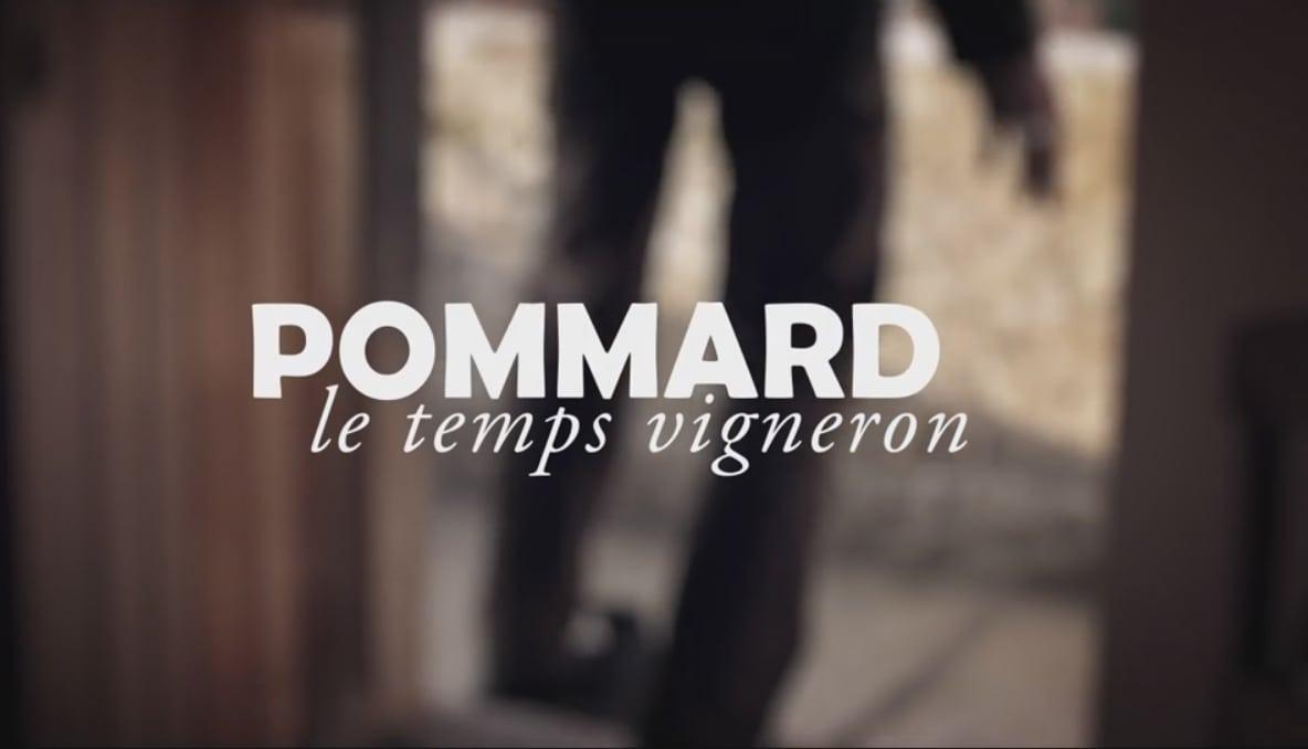 La vidéo qui rend hommage aux vignerons de Pommard et d'ailleurs