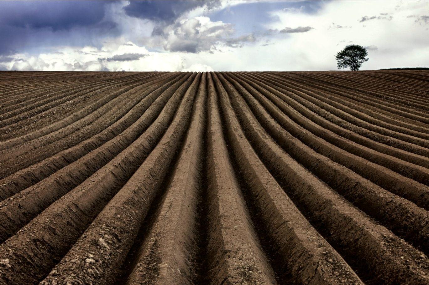 Entre agriculture et viticulture, le sillon de la connaissance