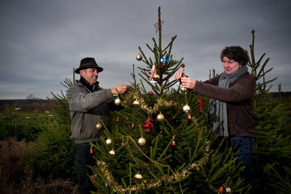Le Morvan, capitale de Noël ?