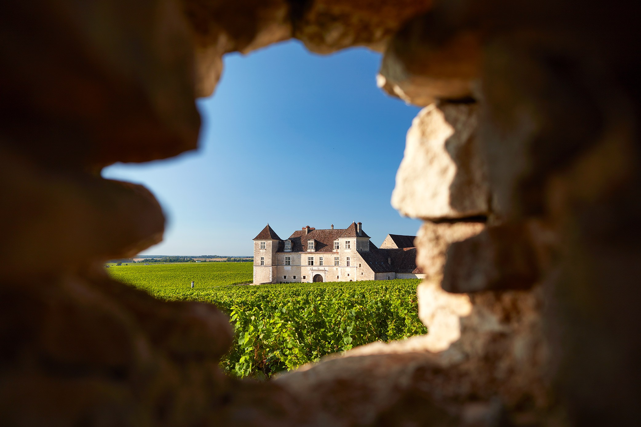 Gautier Capuçon en concert gratuit au château du Clos de Vougeot