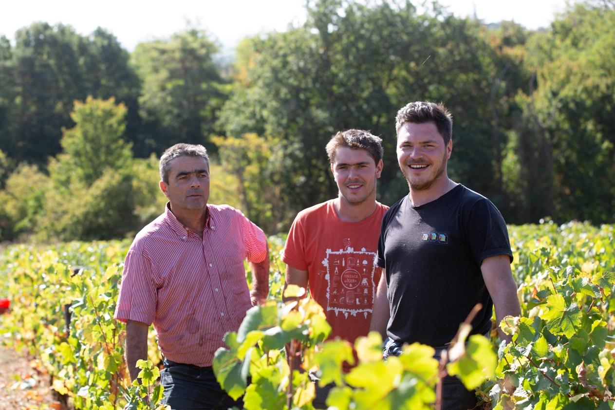 La vigne continue #2 : domaine Derey Frères à Couchey