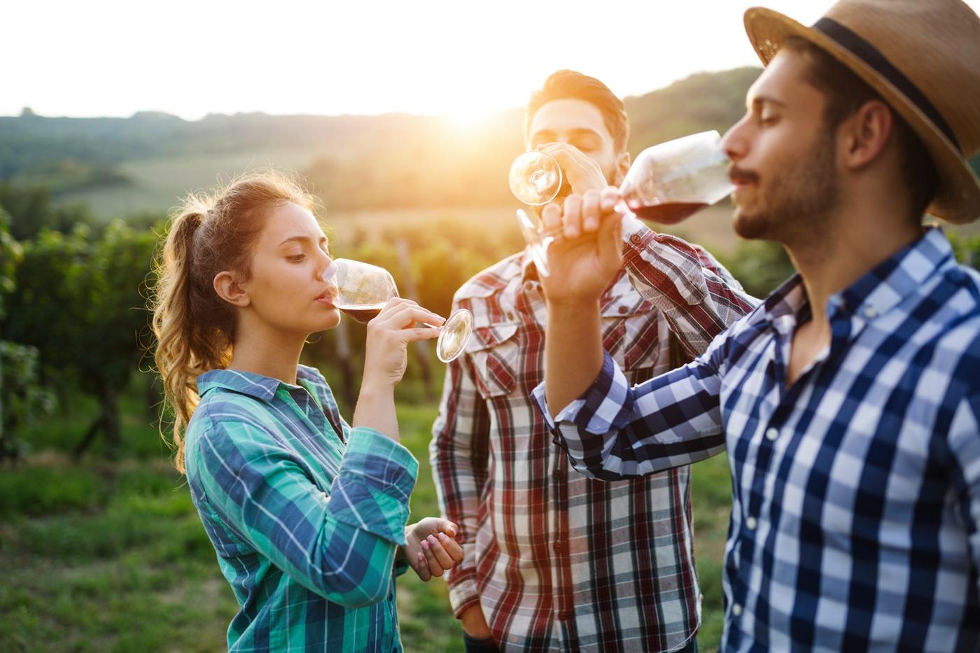 Les 26 et 27 juillet, pique-niquez chez un vigneron indépendant à Gevrey, Meursault ou Volnay