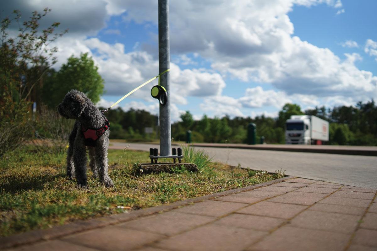 Les autoroutes APRR avec la SPA contre l'abandon des animaux