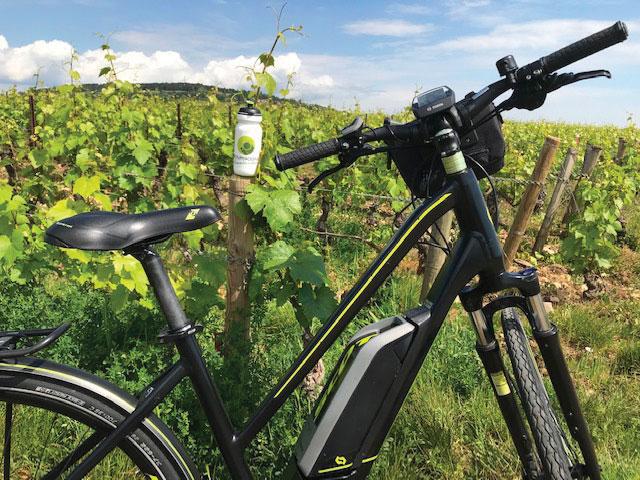 Bien pédaler dans les vignes grâce à Bourgogne Randonnées