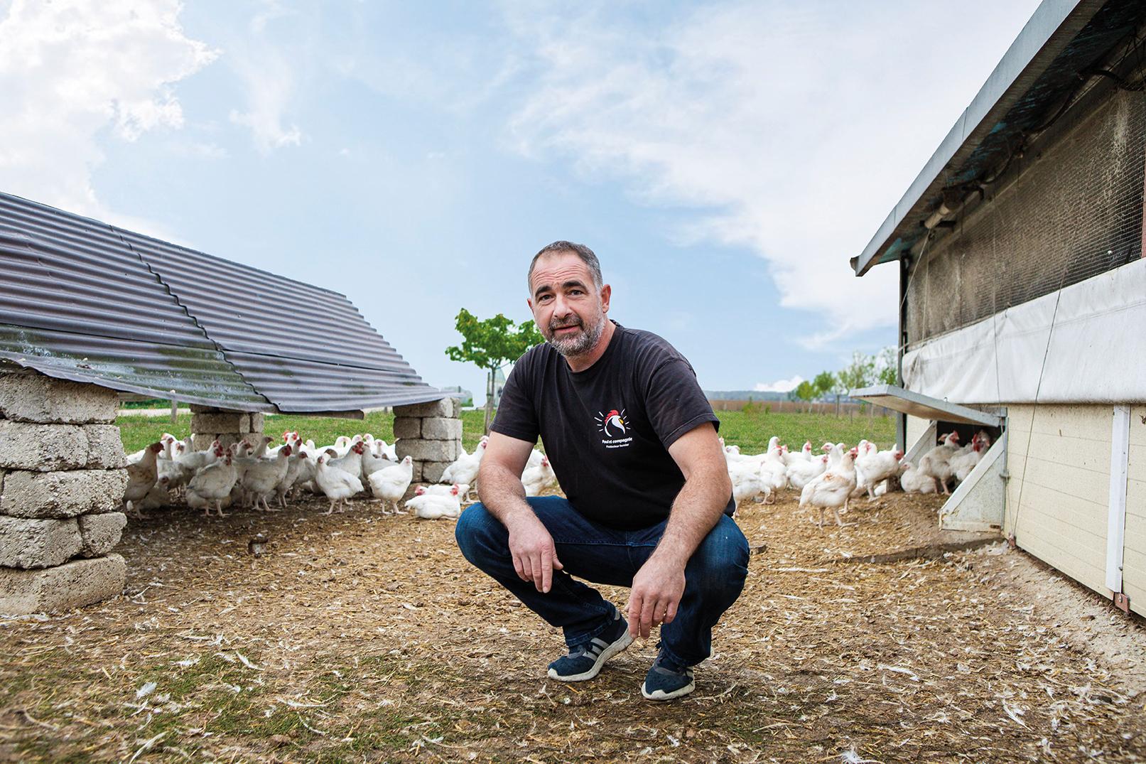 Entre poules et framboises, bienvenue à Poul'et Compagnie