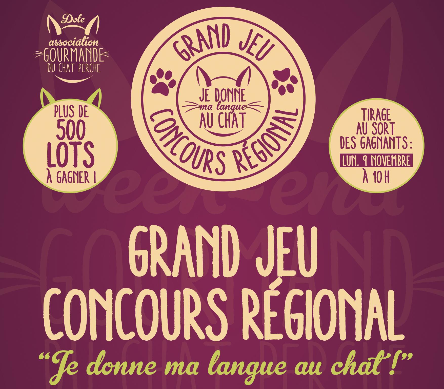 Chat Perché de Dole 2020 : DijonBeaune.fr donne sa langue aux chefs !