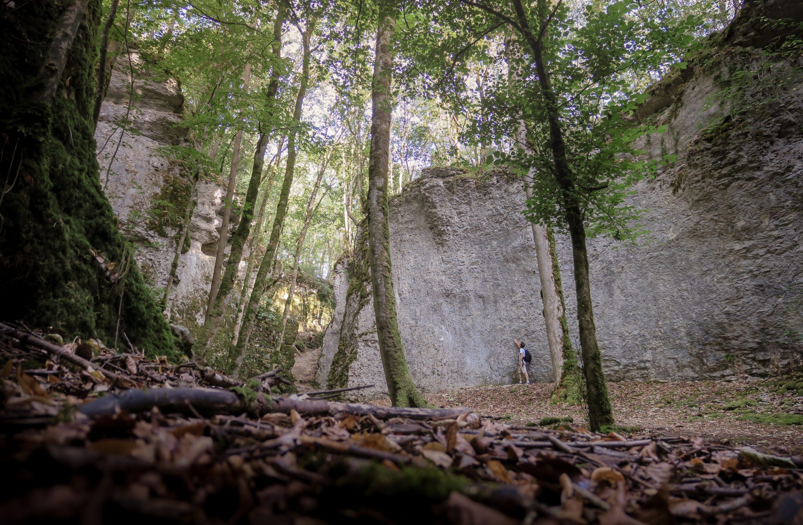 Auberive, Châteauvillain et co : les bons spots haut-marnais du Parc national de forêts