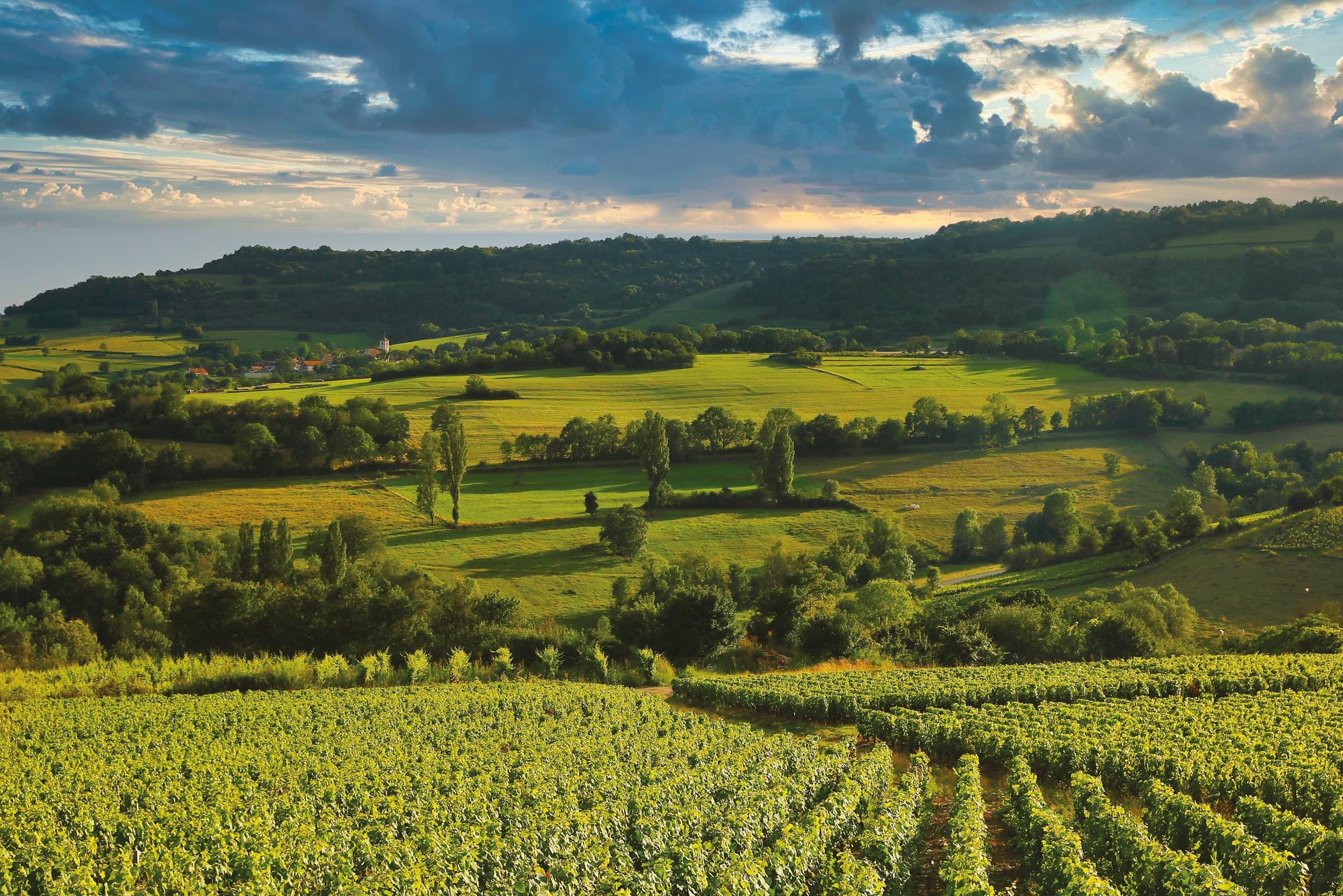 Bourgogne Magazine sacralise les Hautes-Côtes de Beaune et de Nuits